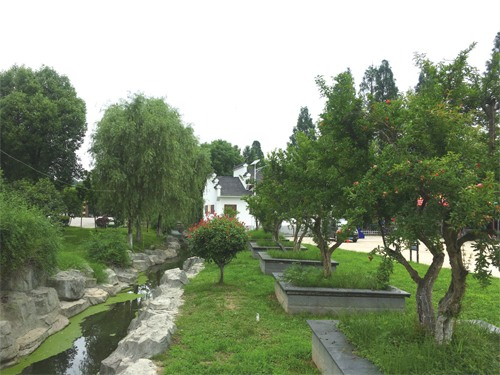 媒体聚焦    初夏雨后,武汉市东西湖区慈惠街道石榴红村,一栋栋白壁