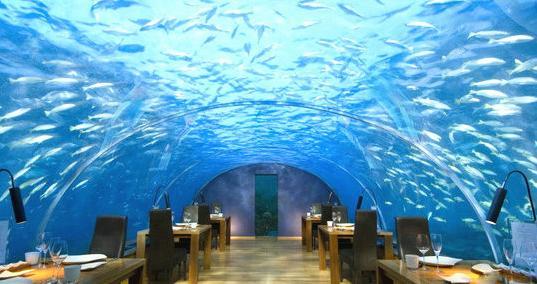 马尔代夫的ithaa海底餐厅
